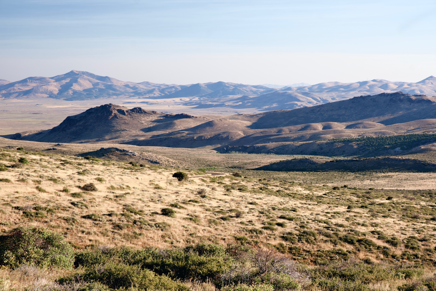 Hills and grasslands of the Humboldt–Toiyabe National Forest